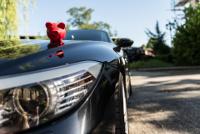 Frontsicht auf BMW mit rotem Sparschwein